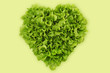 heart-shaped salad, lettuce on green background