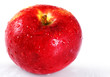 Bright red apple with water drops