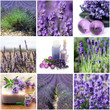 Lavender Collage With Nine Pho...