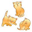 Funny kittens illustration