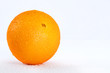 Delicious wet orange over white