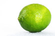 Bright green wet lime over white