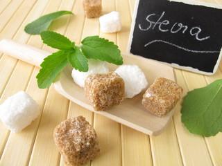 Rohrzucker und Stevia mit beschrifteter Tafel