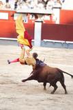 Cogida de un toro en plaza de Madrid España