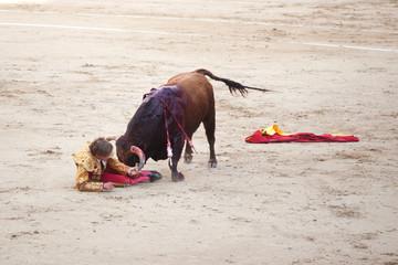 Cogida de un toro a un torero en una corrida en España