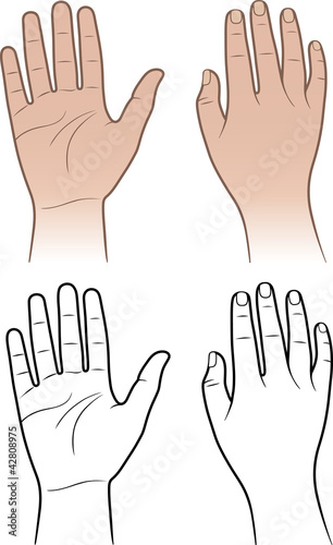 Woman, man hands isolated on white