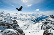 Fototapeten,luft,alpine,alpen,schnäbel