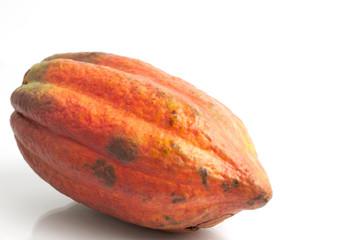 Rote Kakaofrucht