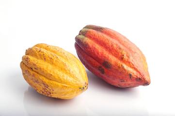 Rote und gelbe Kakaofrucht