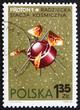 Postage stamp Poland 1966 Proton 1, USSR Satellite
