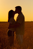 Young couple kissing in the field of wheat on sunny summer day