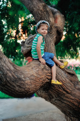the boy on a tree