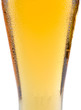 piece of glass of beer