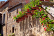 Bright flower pots on house wall