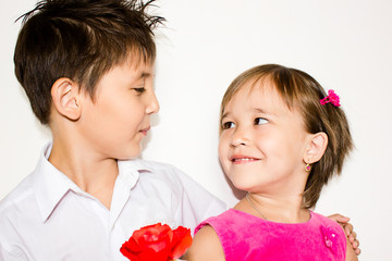 The boy gives to the girl a rose on a white background