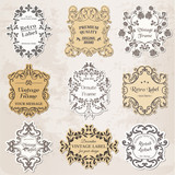 Vector Set: Vintage Frames, Calligraphic Design Elements and Pag