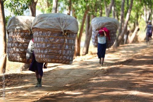 Village women carrying large baskets of produce in Myanmar