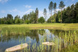 Ecological landscape in Poland