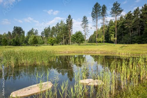 Ecological landscape in Poland|42849756