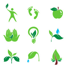 set of nature and orgaic vector icons