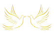 Taube mit Eheringen