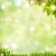 Abstract natural backgrounds with beauty bokeh and lens flare