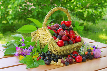 Beeren im Korb - berries in basket 01