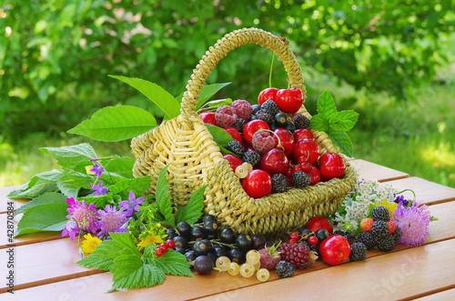 Beeren im Korb - berries in basket 01