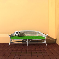 Fussball auf einer Gartenbank