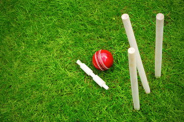 cricket ball on pitch after hitting stumps