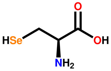 Amino acid selenocysteine structural formula
