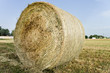 Large bale of straw