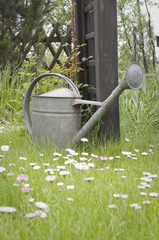 Metal watering can on lawn
