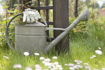 Watering can and garden gloves on lawn