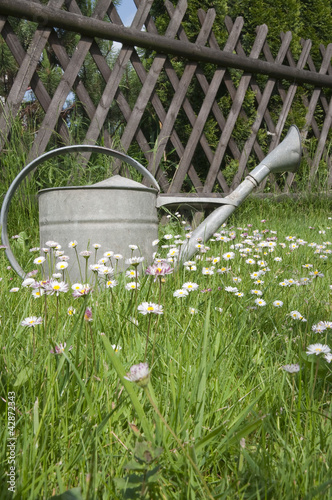 Watering can against wooden fence in spring garden