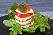 Tomate Mozzarella #3