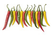 Red, yellow and green chili peppers in a row