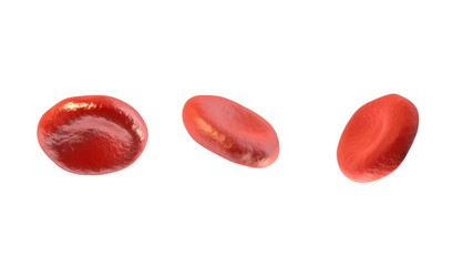 Digital 3DBlood Cells on White Background