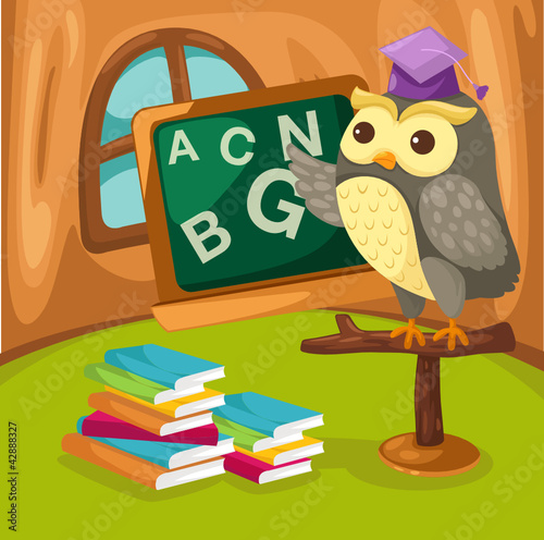 Owl teaching