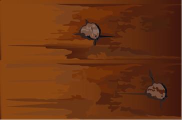 asse di rovere