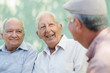 Group of happy elderly men laughing and talking - 42894381
