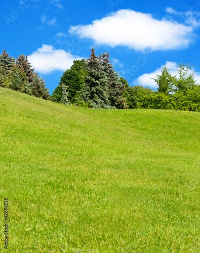 Fototapeten,landschaft,wiese,natur,himmel
