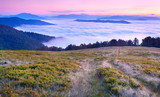 Beautiful summer landscape in the mountains. Sunrise  with cloud