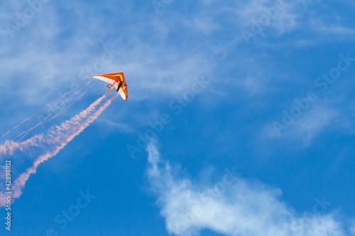 Leinwanddruck Bild Hang glider flying through the sky