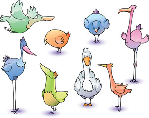 The set of the funny cartoon vector birds.