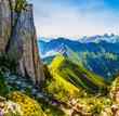 Alpine Garden