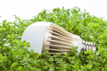LED電球エコイメージ