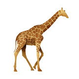 Papercut Giraffe Recycled Paper poster