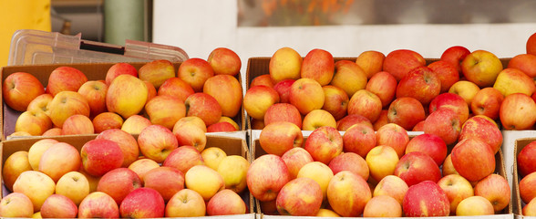Boxes of Apples