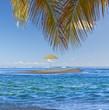 parasol sur îlot de sable